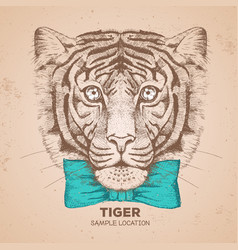 hipster animal tiger hand drawing muzzle of tiger vector image