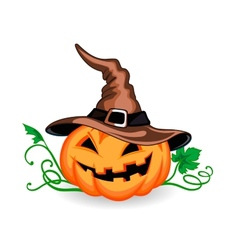 Halloween pumpkin in heat vector