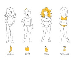 - female types of figures vector
