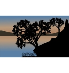 Beautiful sunset the river with silhouette tree vector