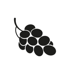 grapes on white background vector image vector image