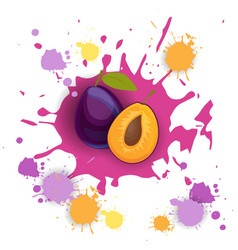 plum fruit logo watercolor splash design fresh vector image