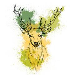 Sketch by pen head noble deer front view vector