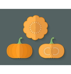 A set of Vegetables in a Flat Style - Pumpkin vector image