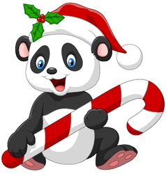 Cartoon funny baby bear holding Christmas candy vector image vector image