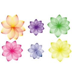 Colored flower vector image vector image