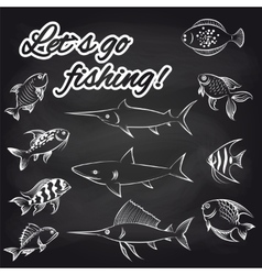 Fish on chalkboard and text vector image