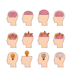 set of heads with brains in white background vector image vector image