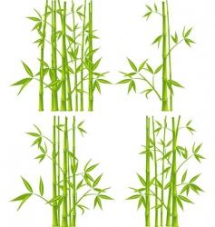 Bamboo mesh vector