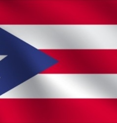 Puerto Rico flag vector image
