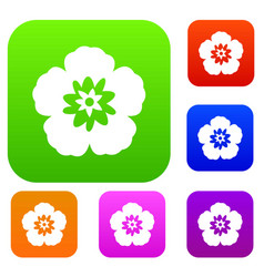 Rose of sharon korean flower set collection vector