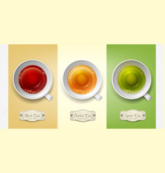 set with cups of tea green black herbal vector image vector image