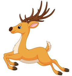 Cute deer cartoon running vector