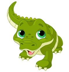 Baby alligator vector image
