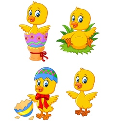 Cute funny baby chicken with easter egg collection vector