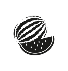 Watermelon on white vector