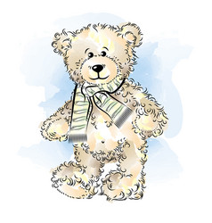 Drawing teddy bear with scarf color vector