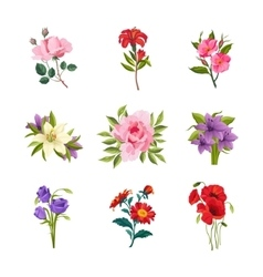 Garden flowers set vector