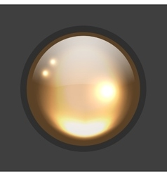 Glossy circle button for your design vector image