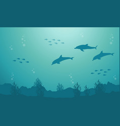 Silhouette of fish and dolphin underwater vector