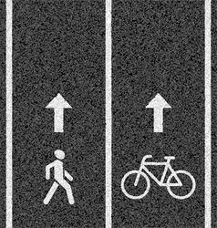 Bicycle and pedestrian paths vector