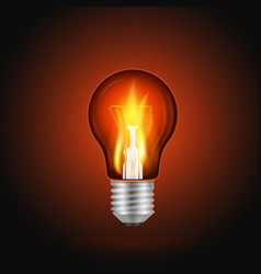 fire in light bulb vector image