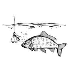 fishing process engraving vector image