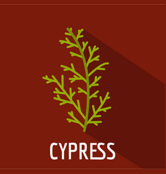 Cypress leaf icon flat style vector
