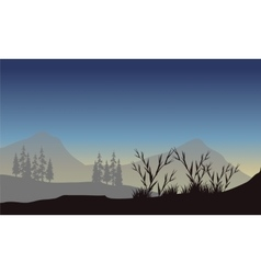 Scenery mountain with fog vector