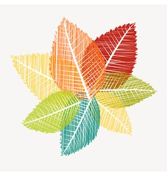 Colorful abstract transparent leaves autumn vector