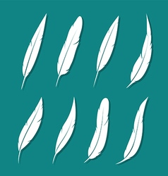 Group of feather white vector image vector image