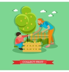 Mom with son collects pears vector