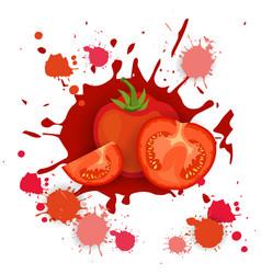 Tomato vegetable logo watercolor splash design vector