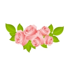 Sweet pink roses vector