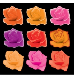 Set of colorful roses vector
