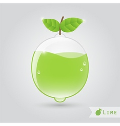 Lime fruit juice vector