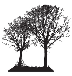 Silhouette of two trees vector