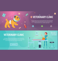 Veterinary clinic horizontal banners vector