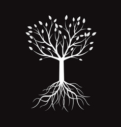 White tree and roots vector