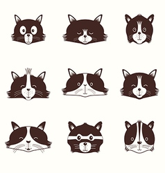 Set Of Different Adorable Cartoon Cats Face vector image