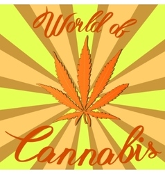 Marijuana hemp Cannabis sativa or Cannabis indica vector image