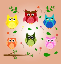 Owl branch cartoon set animal character design vector