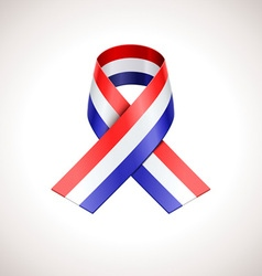 Usa tricolor ribbon american patriotic sig vector