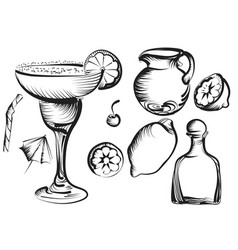 Margarita set vector