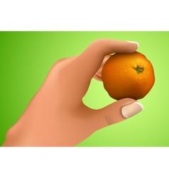 Mandarin in the hand vector