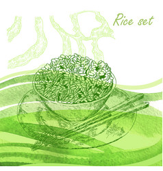rise set hand drawn plate with rise porridge on vector image