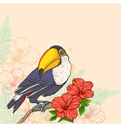 Tropical background with flowers and toucan vector