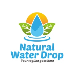 Natural Water Drop Logo vector image