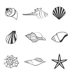 sea shell of line silhouettes vector image vector image