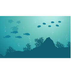 Silhouette of fish and turtle ocean landscape vector